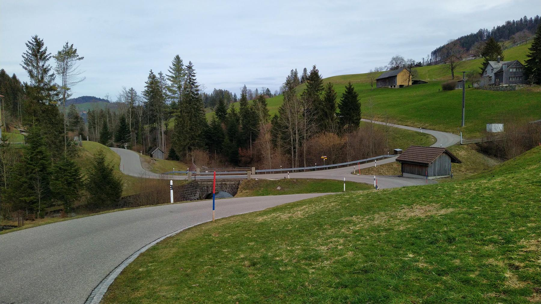 Hintergrund: Am Gonzenbächli (14)