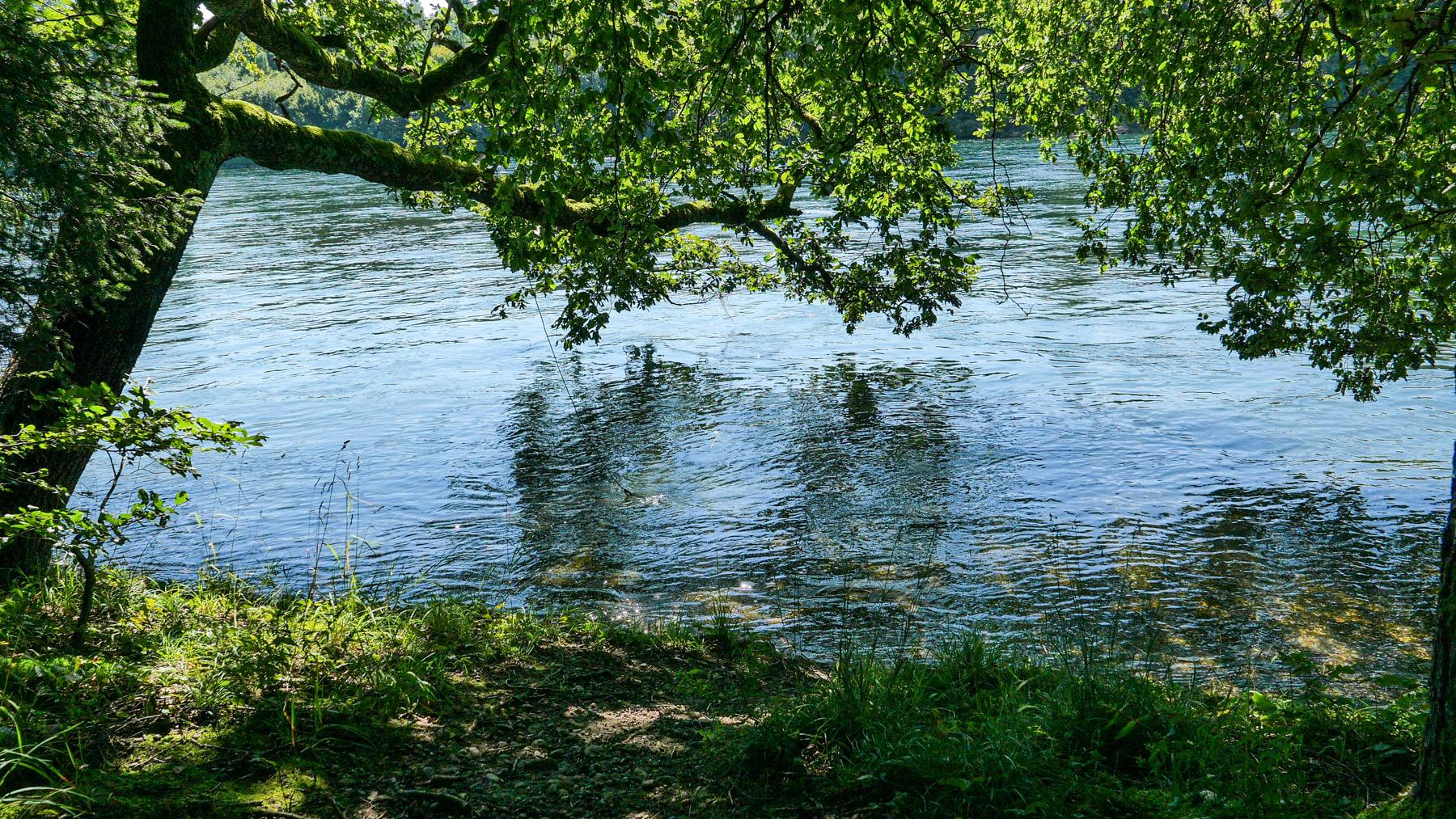 09d Am Rhein
