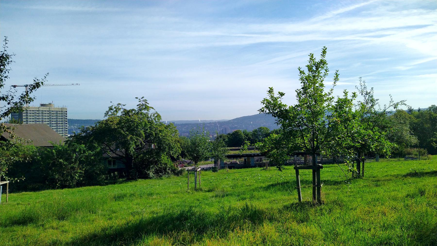 03b Panoramweg 2