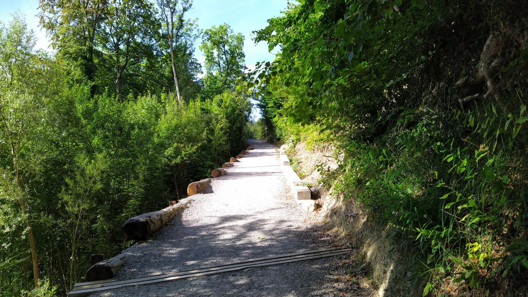 06 Hohensteinweg