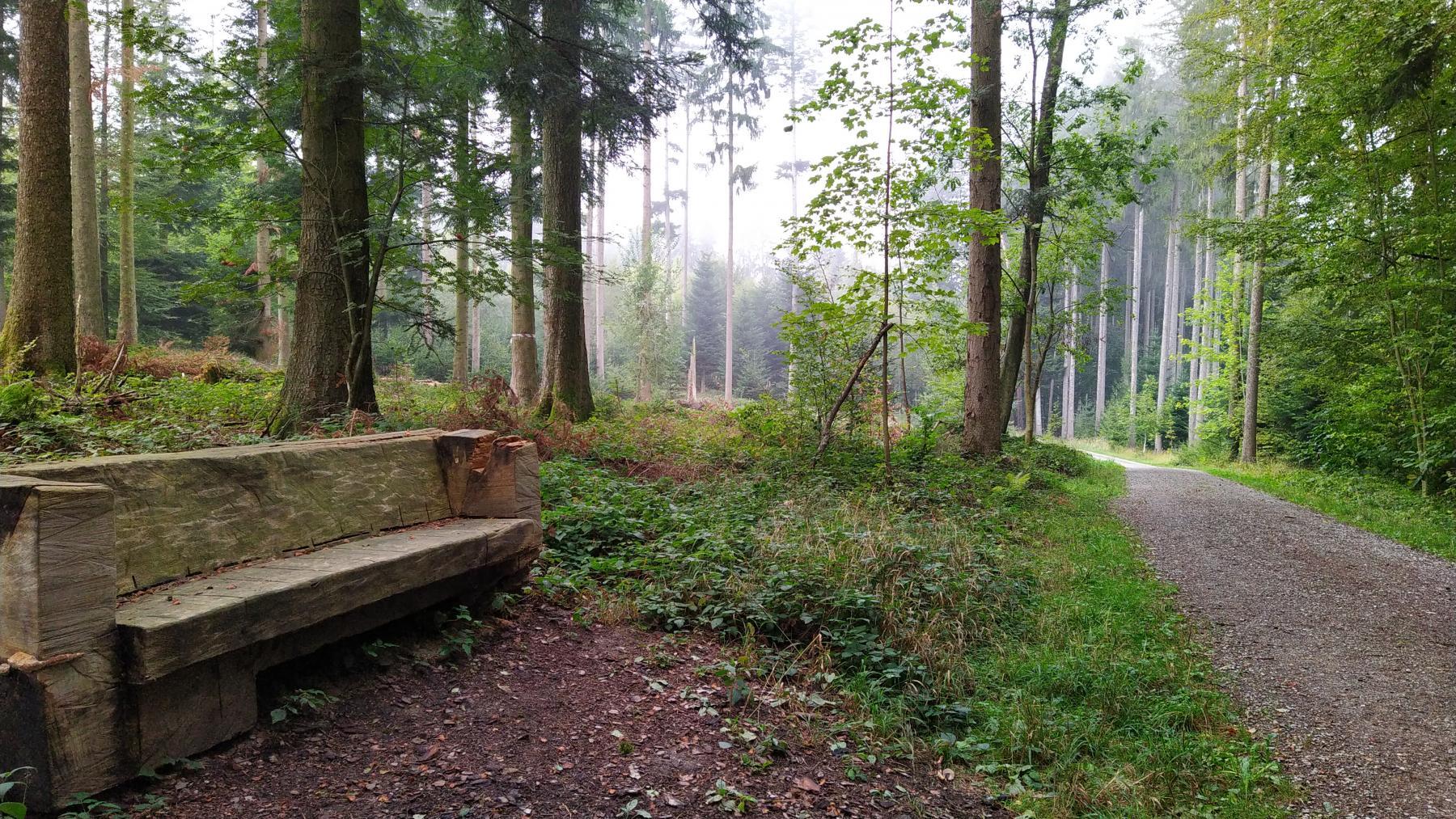 Hintergrund: Luckenholz (16)