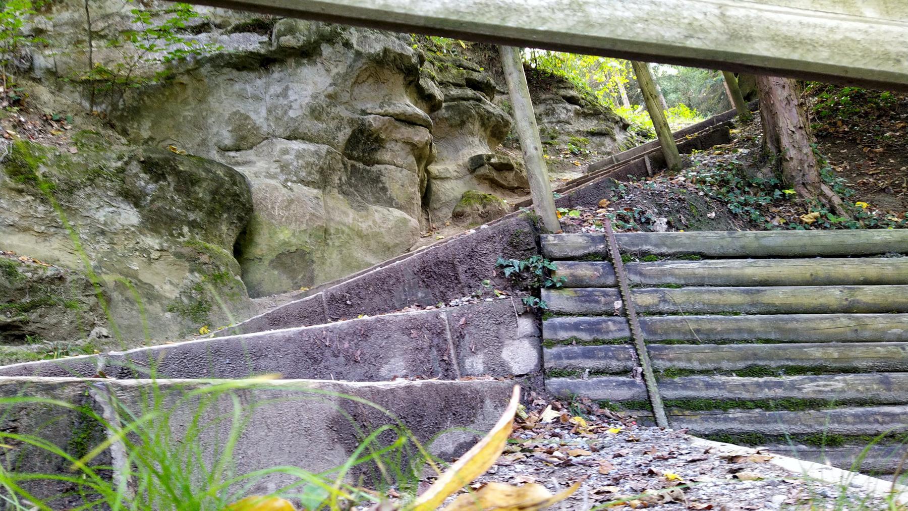 13b Felseneggweg bei Alfred Widmer
