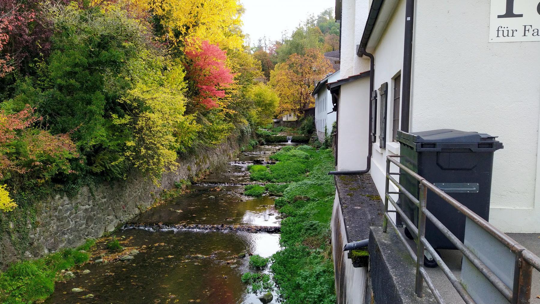 Hintergrund: Küsnacht Dorfbach (1)