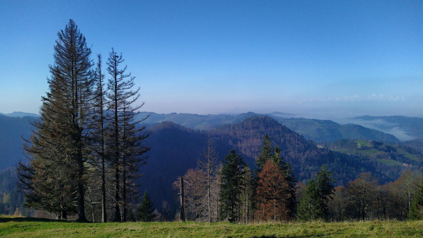 13a Schnebelhorn